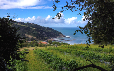 Fields on the sunny day with an amazing panorama over the beach of Deba, Pais Basco