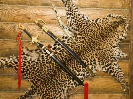 Skin of leopard with swords on the wall Stock Photo - 18055204