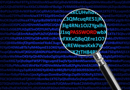 Magnifying glass focused on PASSWORD in middle of digital code Stock Photo - 18033253