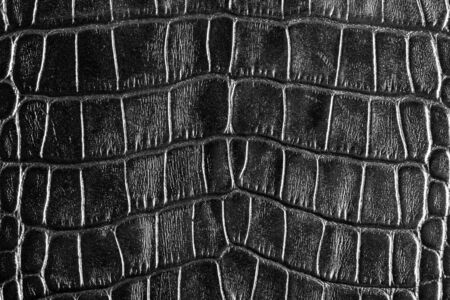 tooled: Rough black leather. Use for texture or background