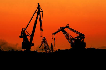 Silhouette of cranes at dusk photo