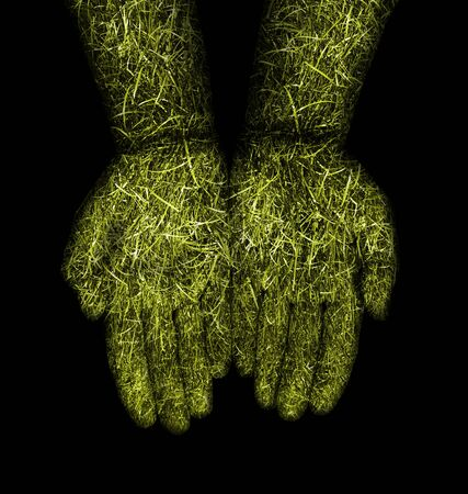 Opened hands with green grass covering Stock Photo - 18055550