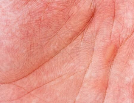 human skin texture: Close-up of human hand. Background or texture Stock Photo