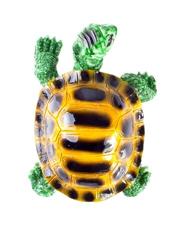 Ceramic figurine of turtle. Isolated on white. Top view Stock Photo - 18071865