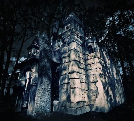 Mystery medieval castle in forest at night photo