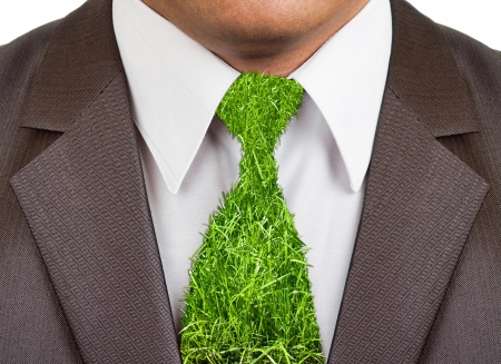 Close-up view of businessman formal wear suit with grass tie photo