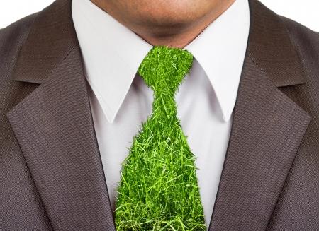 Visualizzazione di Close-up di uomo d'affari vestito formale indossare con cravatta erba Archivio Fotografico