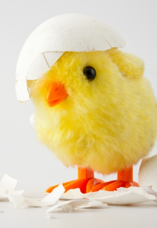 emerge: Toy baby chicken with eggshell on head