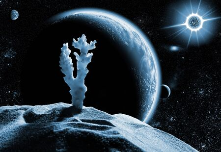 Sea coral on dead planet in space Stock Photo - 18195051