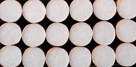 Close-up of cigarettes in pack. Background or texture photo