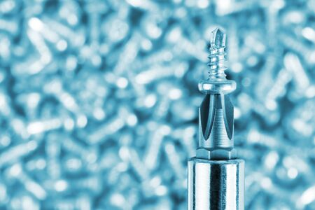 fasteners: Close-up of screwdriver and small screw. Toned in blue