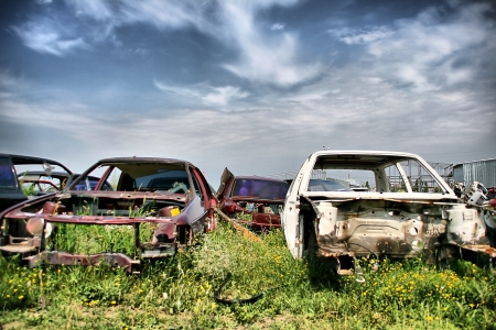 Old cars on the meadow photo