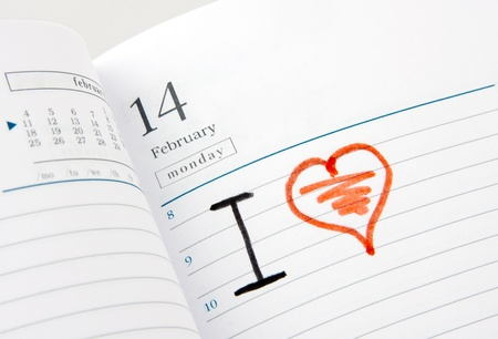 number 14: Diary page open to Valentines Day February. I love...