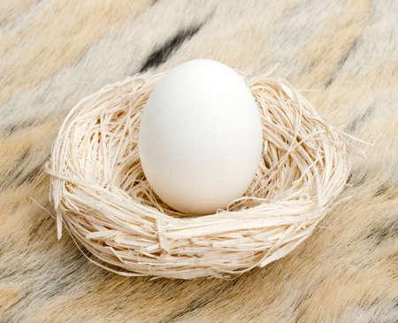 nestegg: Big egg standing in small straw nest
