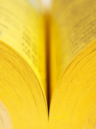 yellow pages: Close-up view of open yellow pages book