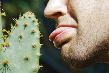 thorn tip: Man touching sharp cactus by tongue