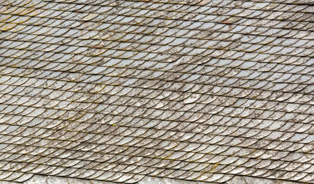 detailed view: Detailed view of tiled roof