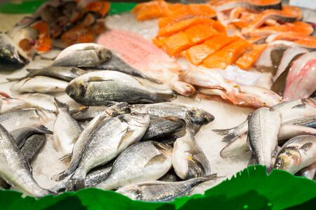 Assorted fish on ice in seafood market photo