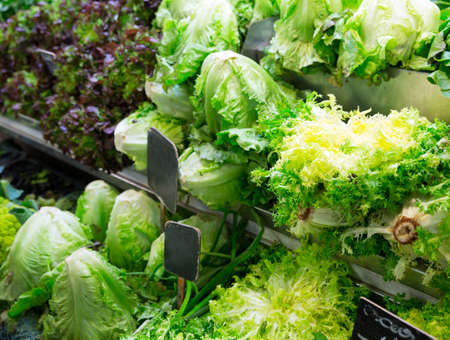 Assorted cabbages in local market photo