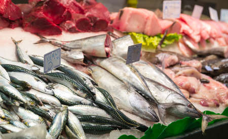 souk: Assorted fish on ice in seafood market