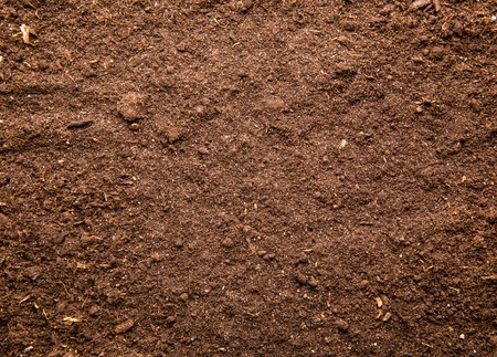 Fresh brown soil background Banco de Imagens