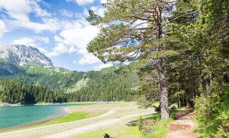 lake beach: Nice panorama view of blue lake in Durmitor National Park, Montenegro Stock Photo
