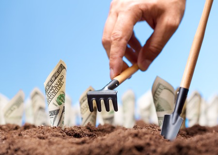 rake: American dollars grow from the ground - carrying the investments Stock Photo