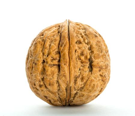 Closed big walnut isolated on white photo