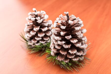 fir cones: Two fir cones on the wooden table