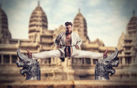arts: Fat karate fighter practicing against the temple