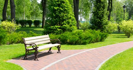 Wooden bench in a spring park