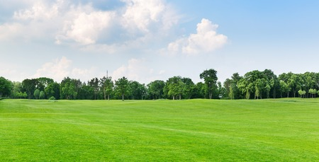 Panorama view of beautiful summer park Stock Photo