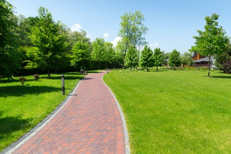 alley: Long stone pavement alley in the park in the spring