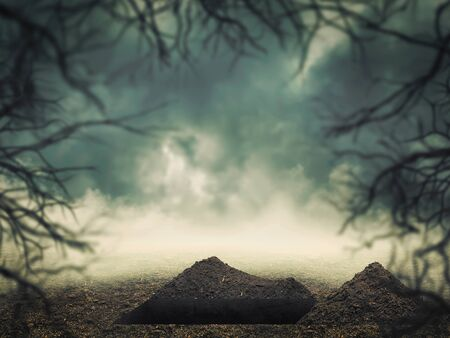 burial: Open grave in the forest at dusk Stock Photo