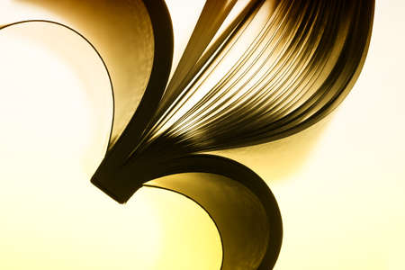toned: Macro view of abstract paper curves. Toned image