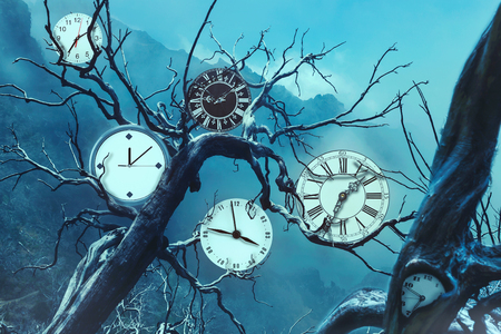 time machine: Many clocks on old trees