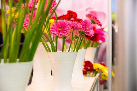 marguerites: Marguerites in vase on the shelf close up Stock Photo