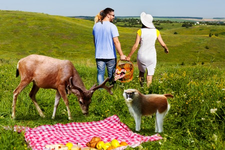 Young couple going home arter picnic, there are deer and monkey near the blanket