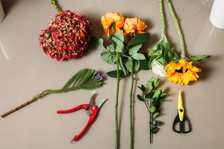 conservatory: Florist creation tools
