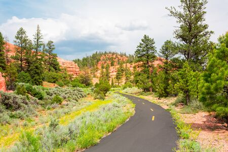 Mountain road at  Bryce Canyon National Park