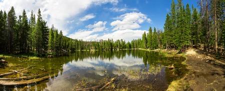 Evergreen woods around lake of Estes Park panorama