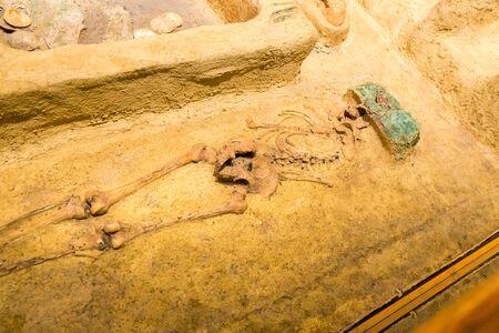 Archeological excavations of human burial. Banco de Imagens