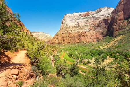 Amazing view of canyon at Zion National Park