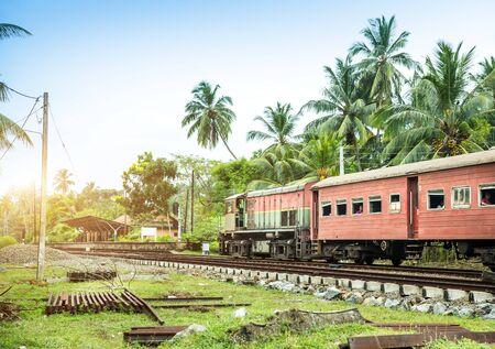 raices de plantas: Train station, locomotive, railway road, Sri Lanka