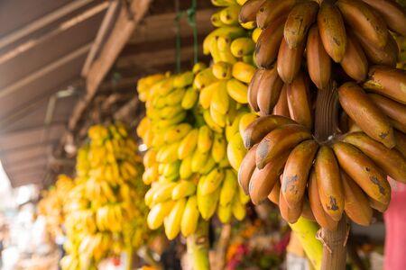 Bananas bunch in fruit shop on sri lanka
