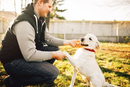 Male cynologist with trained working dog