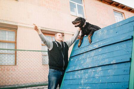 Cynologist training working dog on playground