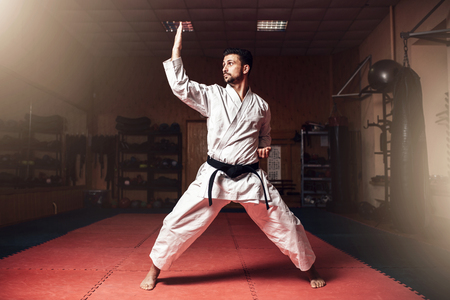 Martial arts master on judo training in gym Stock Photo