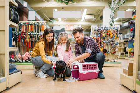 Family buying supplies for little puppy in petshop