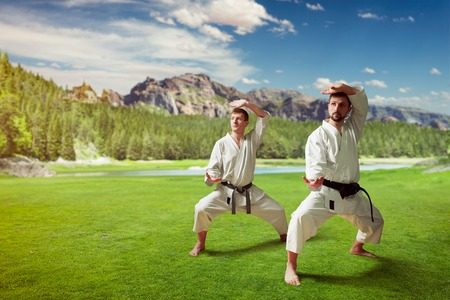 Martial arts masters training in summer park Stock Photo
